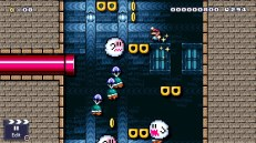 Switch_SuperMarioMaker2_ND0213_SCRN17_bmp_jpgcopy