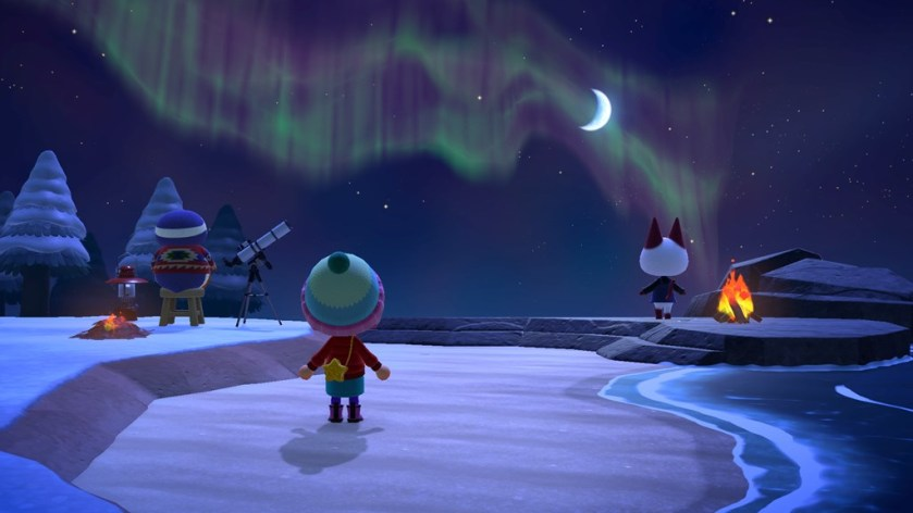 Switch_Animal Crossing New Horizons_image 4